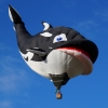 Killer Whale Balloon